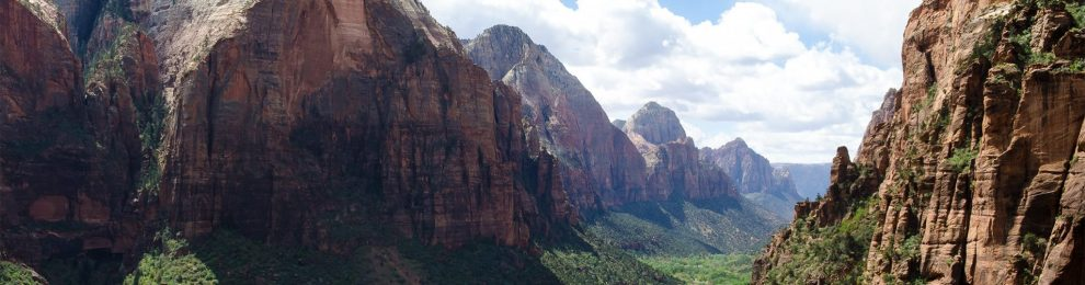 Upwards Inspiration In Zion Park