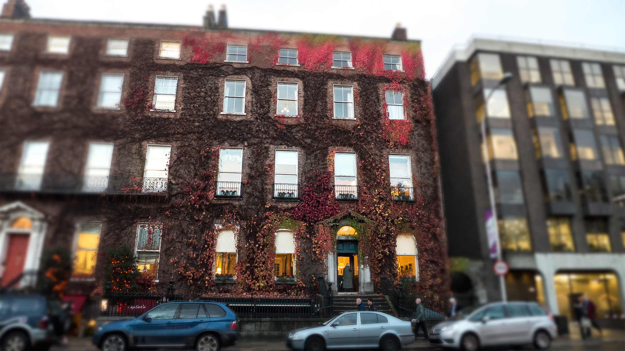 dublin apartment building vines